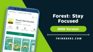 Forest Stay Focused Mod Apk